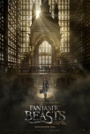 fantastic beasts where to find them dvd